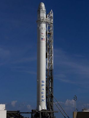 Falcon 9 on pad